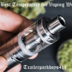 Guide-to-the-Best-Temperature-for-Vaping-Weed-2-1536x613