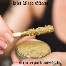 Kief Weed Effects
