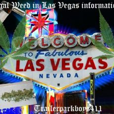 Legal Weed in Las Vegas information