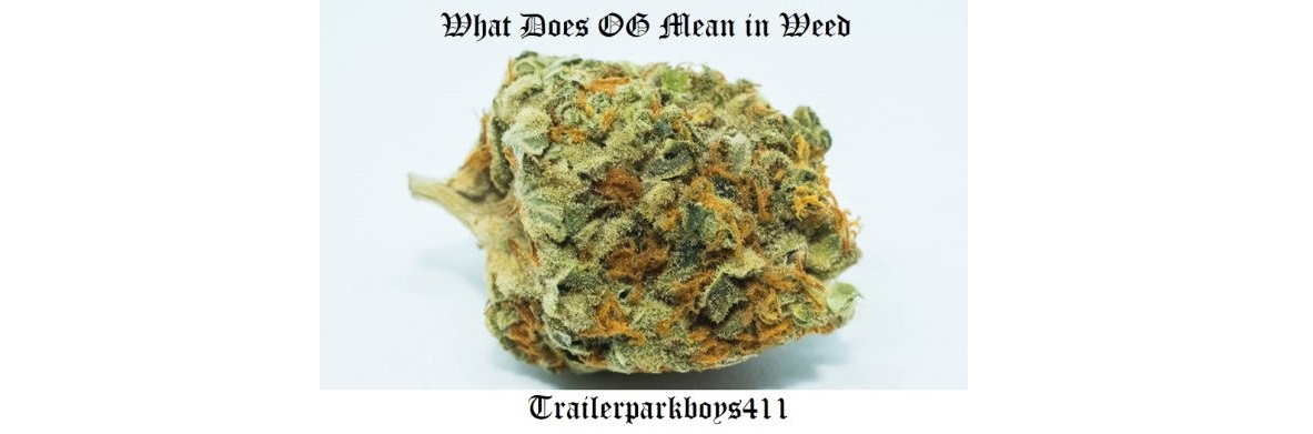 What-does-OG-mean-in-weed