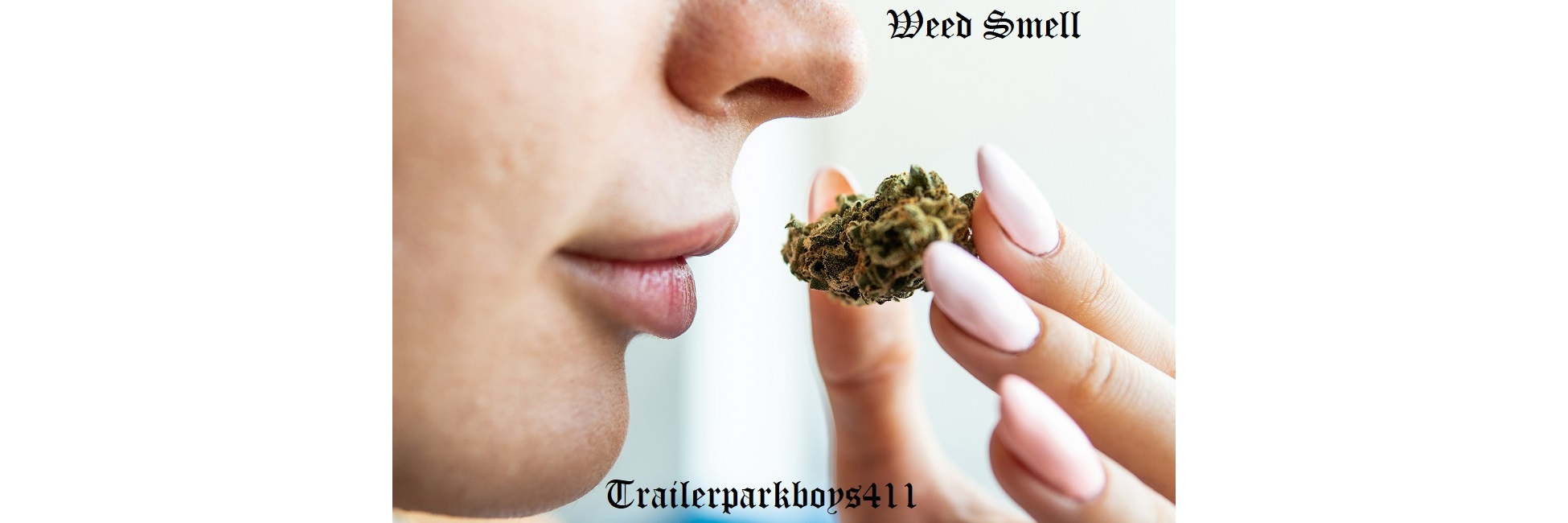 weed msell