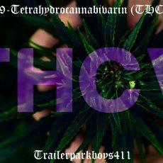 Δ9-Tetrahydrocannabivarin (THCV)