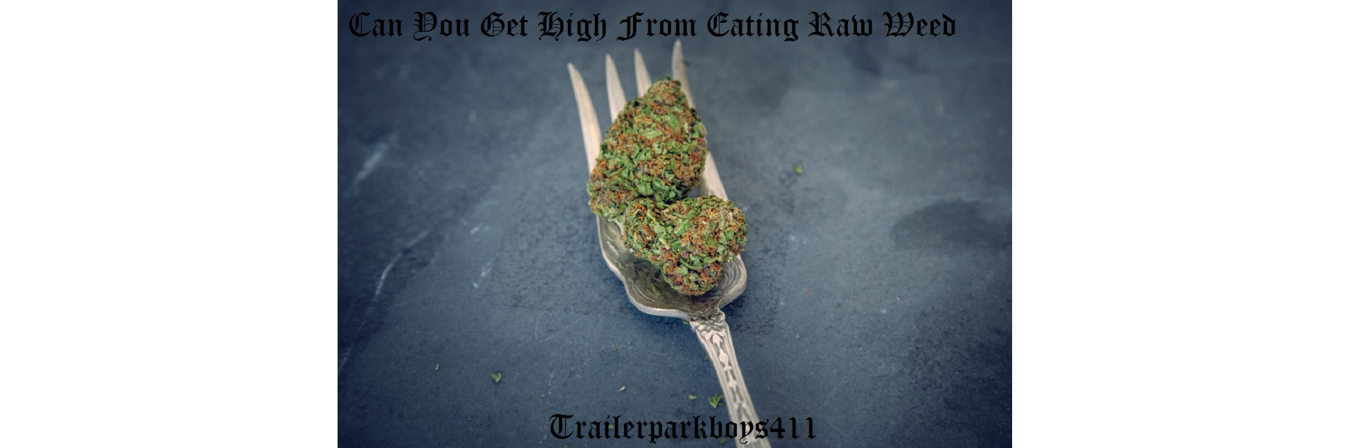 Can You Get High From Eating Raw Weed