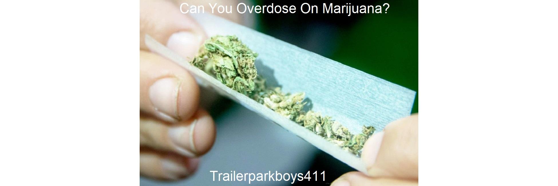 Can You Overdose On Marijuana