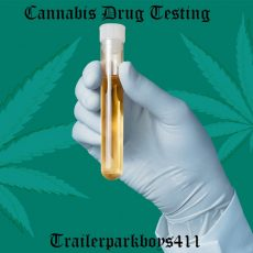 Cannabis Drug Testing