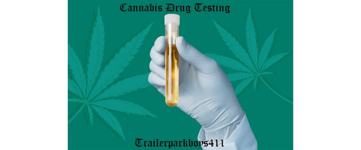 Cannabis Drug Testing