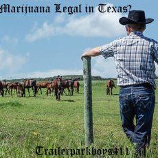 Is Marijuana Legal in Texas