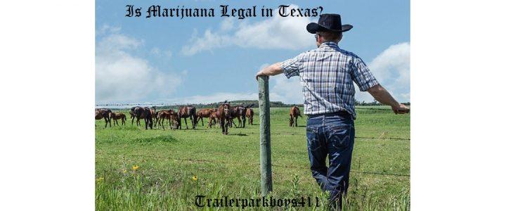 Is Marijuana Legal in Texas?