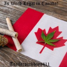 Is Weed Legal in Canada
