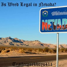 Is Weed Legal in Nevada