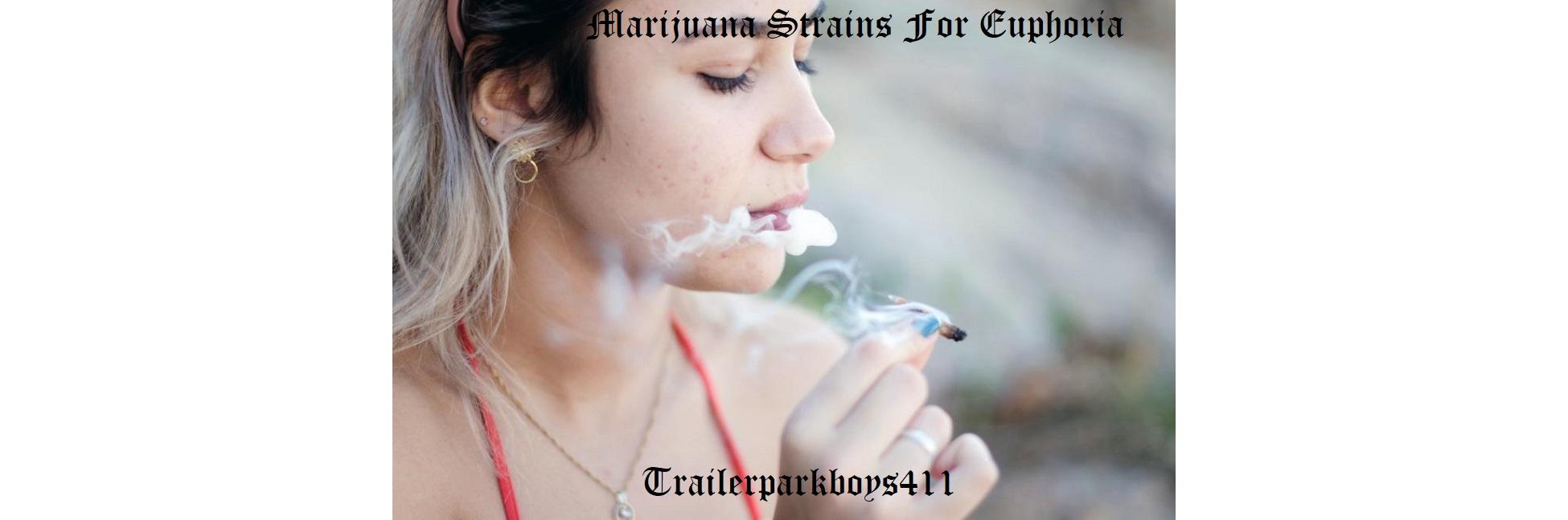 Marijuana Strains For Euphoria