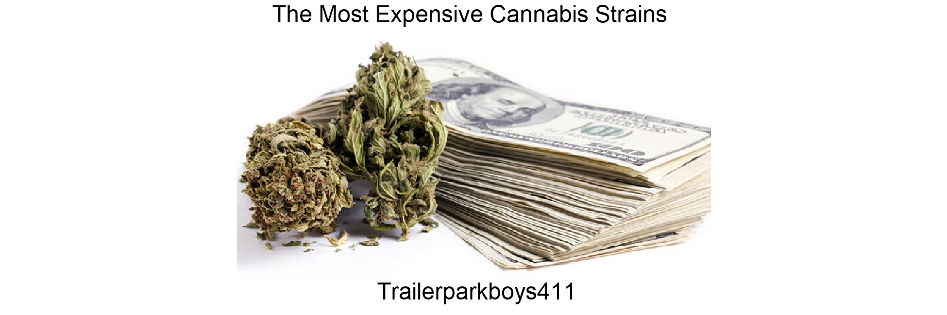The Most Expensive Cannabis Strains