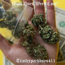 What Does Weed Cost