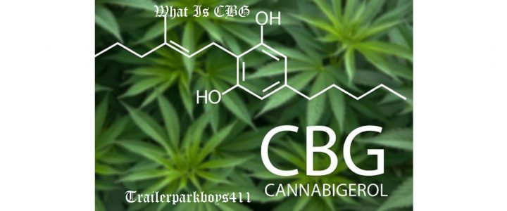 What Is CBG and How Is It Different from CBD?