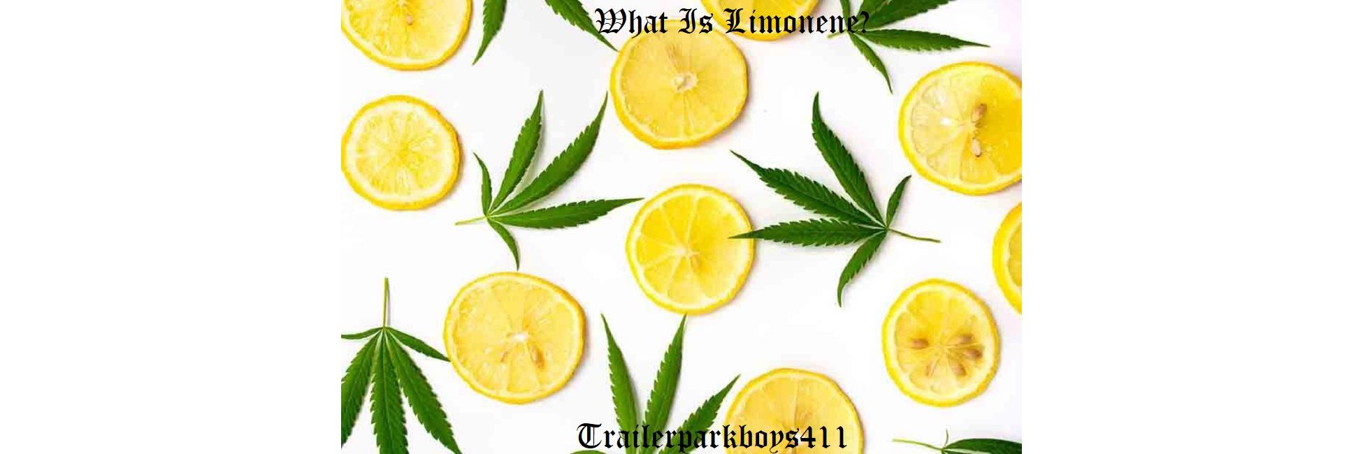 What Is Limonene