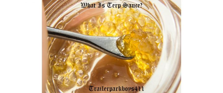 What Is Terp Sauce?