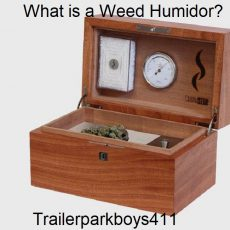What is a Weed Humidor